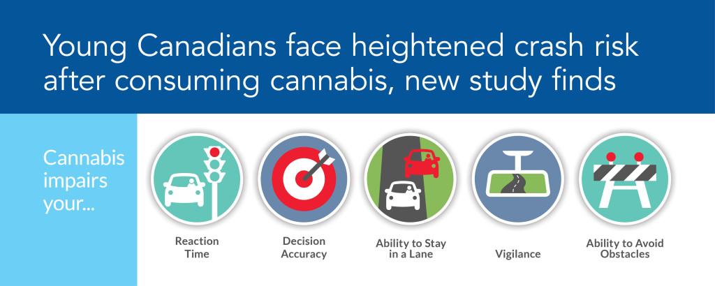 Cannabis inforgraphic
