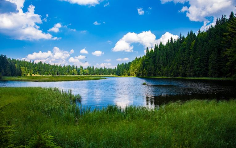 saskatchewan-lake